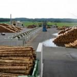 Sortierstrang am Rundholzplatz zur Holzweiterverarbeitung